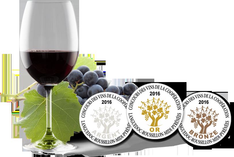 Vin rouge - grappe de raisin - médailles