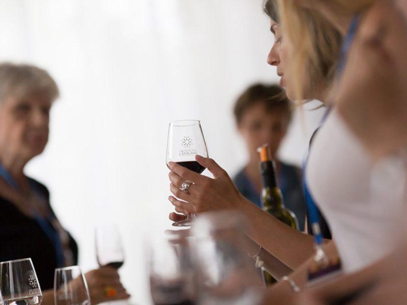 Dégustation des vins du concours